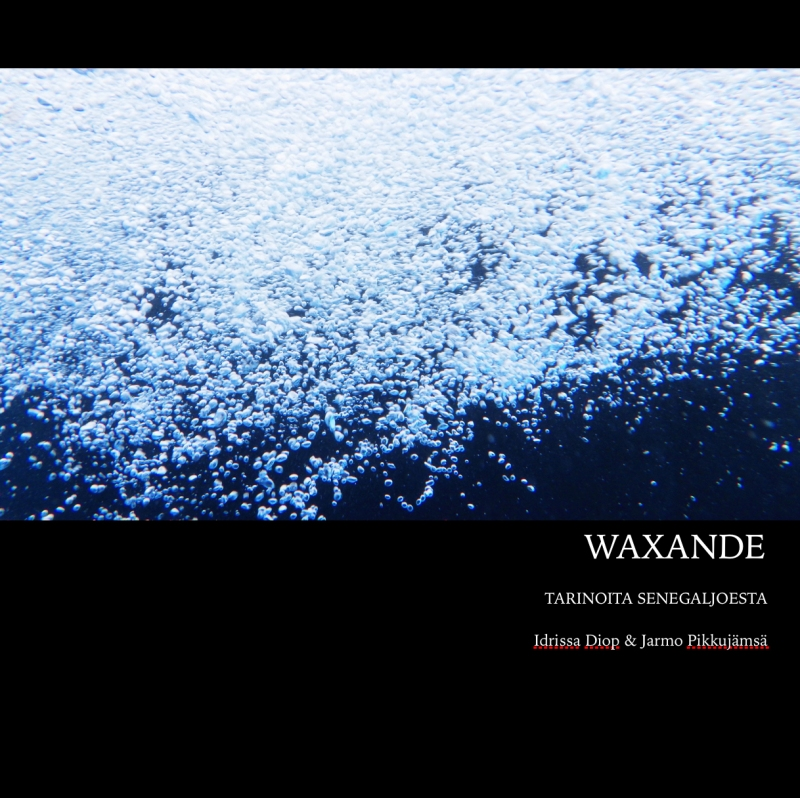 Waxande cover for blog